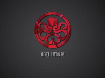 Bộ sưu tập thiết kế logo hình con bạch tuộc