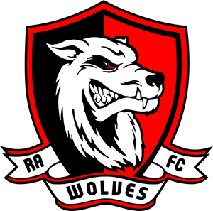 Bộ sưu tập logo đẹp lấy cảm hứng từ hình tượng chó sói