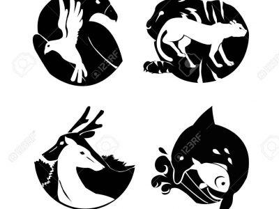 Thiết kế logo lấy cảm hứng từ hình tượng thú cưng